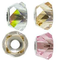 CRYSTALLIZED™ 5920 Crystal BeCharmed Helix Beads